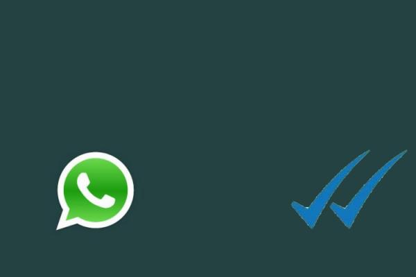 whatsapp_TM
